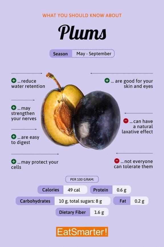 plum information graphic