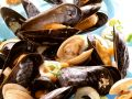 Clams and Mussels in Creamy Wine Sauce recipe