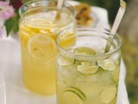 Citrus Fruit Cooler recipe