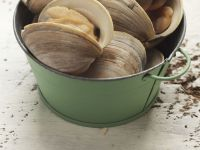 Clam Soup recipe