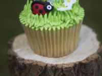 Countryside Cupcakes recipe