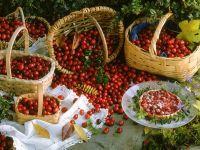 Cranberry Tartlets recipe