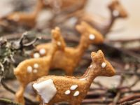 Deer Cookies recipe