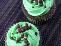 Double Chocolate Cupcakes with Peppermint Buttercream recipe