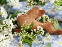 Easter Hare Cookies recipe