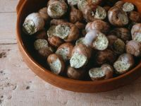 Escargot in Herb Butter