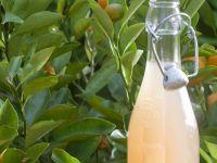 Fresh Grapefruit Juice recipe