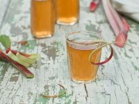 Fresh Rhubarb Juice recipe