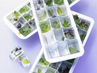 Frozen Herbs in Ice Cube Trays recipe