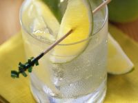 Gin and Tonic recipe