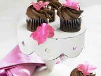 Celiac-friendly Individual Chocolate Cakes recipe