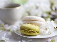 Green Tea Macarons with Chocolate-Pistachio Filling recipe