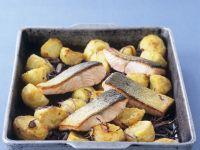 Harissa Potatoes with Salmon recipe