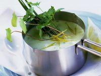 Herb Sauce recipe