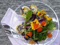 Baby greens Recipes