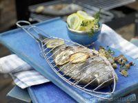 Sea Bream Recipes