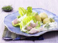 Trout fillet Recipes