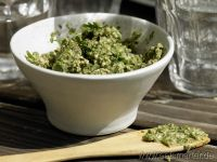 Cilantro Recipes