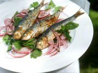 Italian Sardine Salad recipe