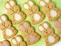 Kids Rabbit Cookies recipe
