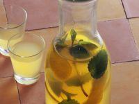 Lemon Balm and Mint Liqueur recipe