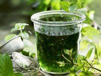 Mint and Vinegar Relish recipe