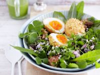 Nut-crusted Eggs on Spring Greens recipe