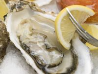 Oysters with Lemon and Cocktail Sauce recipe