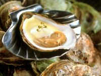 Oysters with Sabayon recipe