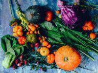 Going Vegetarian: 10 Best Tips for Beginners