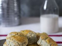 Poppy Seed Muffins recipe