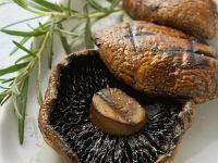 Portobello Mushroom Recipes