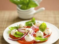 Red Onion, Basil, Tomato, and Mozzarella Salad recipe