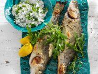 Roasted Sea Bass recipe