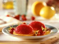 Rose Hip and Citrus Sorbet recipe