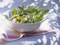 Salad with Radishes and Herbs recipe