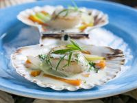 Scallops in Tarragon Sauce recipe