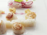 Scallops with Celery Root Puree and Radish Salad recipe