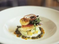 Seared Red Mullet and Scallops with Lentils, Raita and Mango Sauce recipe