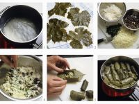 Greek Dolmades recipe