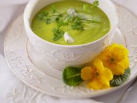 Summer Green Vegetable Soup recipe