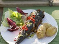 Summer Grilled Mackerel recipe