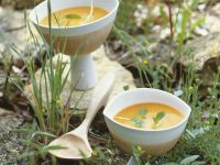 Tomato Gazpacho with Pastis recipe