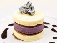 Vanilla and Blueberry Ice Cream Cake recipe