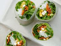 Shred Diet recipes