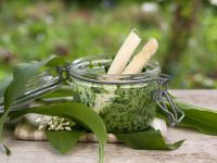 Wild Garlic and Nettle Pesto recipe