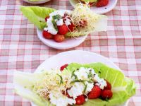 Wild Strawberry Salad with Cottage Cheese and Sprouts recipe
