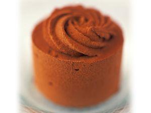 Frozen Gourmet Chocolate Dessert recipe
