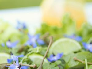 Mixed Green Salad with Borage Flowers recipe