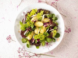Mixed Green Salad with Potatoes recipe